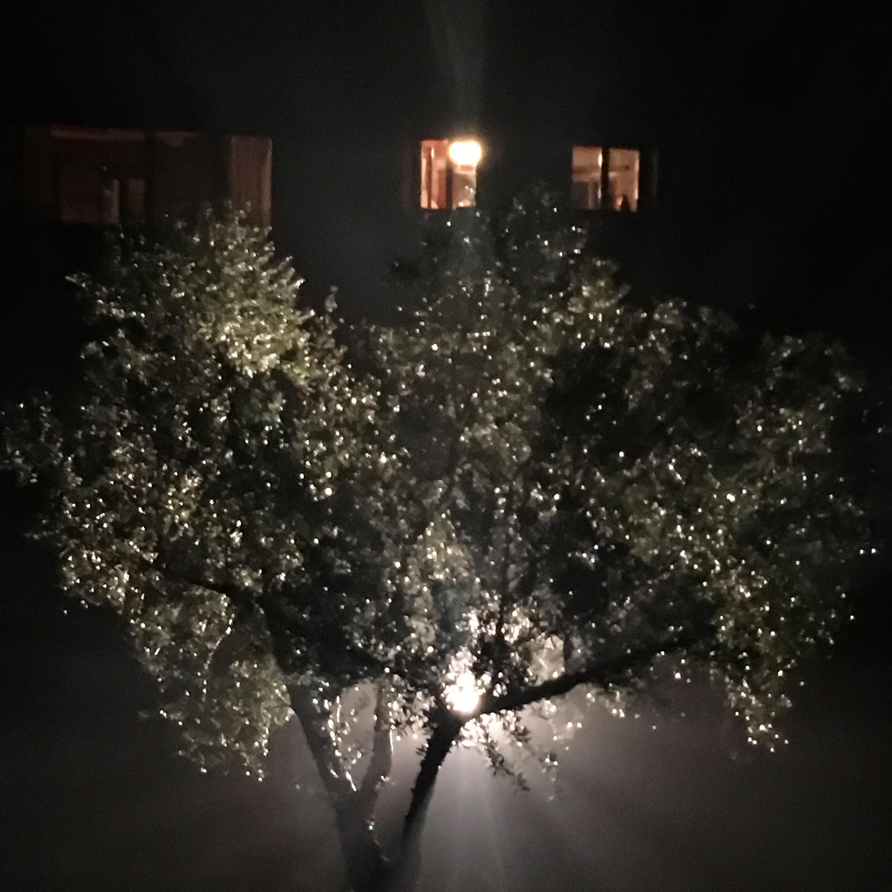 Koumaria Residency 2018 Blog 1